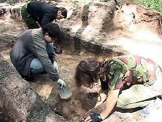 Воронежские археологи выступают против водовода