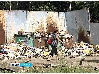 Воронежские бизнесмены не могут поделить мусор