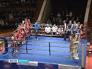 Воронежские боксёры обошли белорусов в матчевой встрече