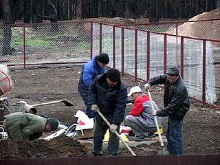 Воронежские чиновники работали на погорельцев