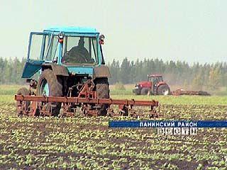 Воронежские фермеры вынуждены охранять свои угодья от захвата