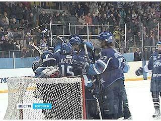 Воронежские хоккеисты смогли выйти в 1/4 финала плей офф!