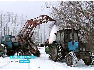 Воронежские озимые подкормят