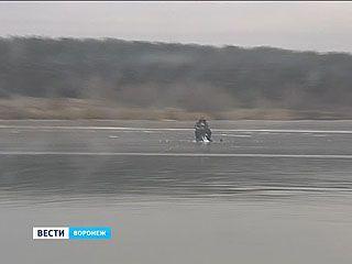 Воронежские спасатели патрулируют акваторию - и уже есть, кого вылавливать