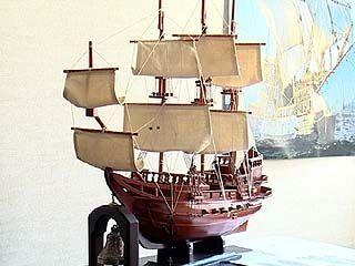 Воронежские власти решили воссоздать первый российский линейный корабль