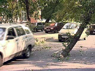 Воронежским спасателям пришлось устранять последствия непогоды в минувшие выходные