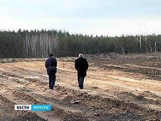 Воронежский регион - малолесистая территория с серьезным дефицитом кислорода в воздухе