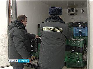 Воронежский Россельхознадзор задержал 5,5 тонн охлаждённого мотыля