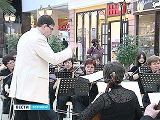 Воронежский симфонический оркестр продолжил цикл концертов классической музыки