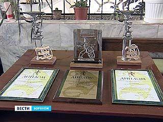 Воронежский театр кукол получил две награды на международном фестивале
