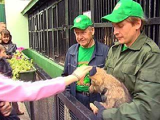 Воронежский зоосад получил статус зоопарка