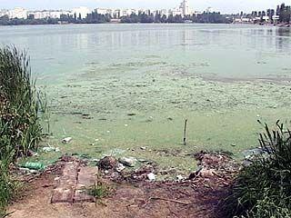 Воронежское водохранилище на грани экологической катастрофы