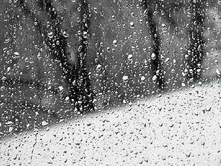 Воронежцев ждёт европейский новый год - без снега и морозов