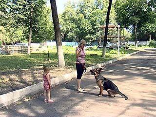 Воронежцы будут выгуливать собак только в специально отведенных местах