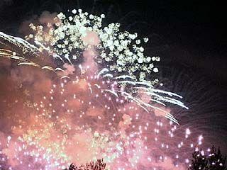 Воронежцы остались довольны праздничным салютом