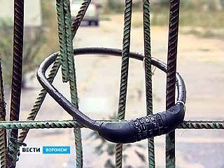 """Воронежцы погрузились в """"междоусобные войны"""""""