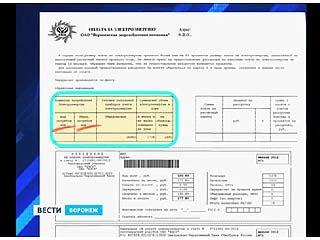 Воронежцы получили квитанции с предложением разбить платежи за свет на части