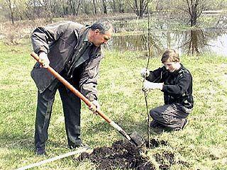 Воронежцы решили украсить город несколькими новыми аллеями