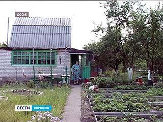 Воронежцы стремятся успеть попасть под дачную амнистию
