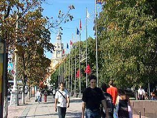 Воронежцы встретят День города трезво