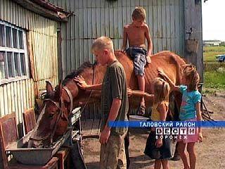 Воспитанники таловских интернатов проводят каникулы в семьях