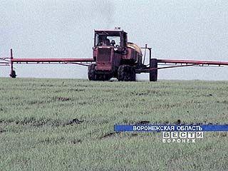 Все районы области включились в весенне-полевые работы