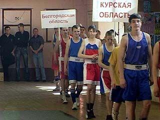 Всероссийская летняя спартакиада учащихся по боксу проходит в Воронеже