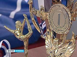 Всероссийский турнир по спортивной гимнастике финишировал в Воронеже