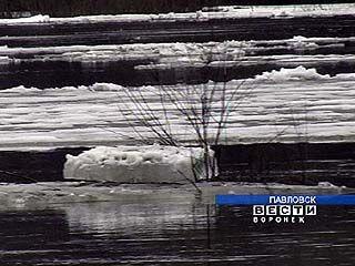 Вскрылся ледовый покров на реке Дон