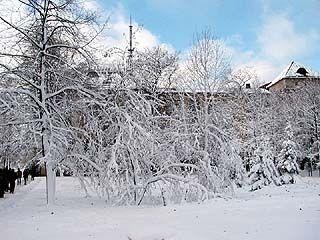 Выпавший снег вновь стал стихийным бедствием