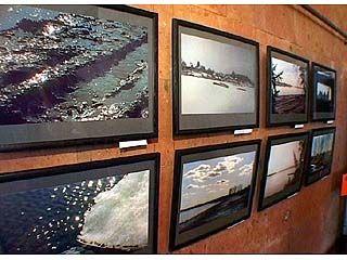 Выставка фотографа Александра Нечаева открылась в Воронеже