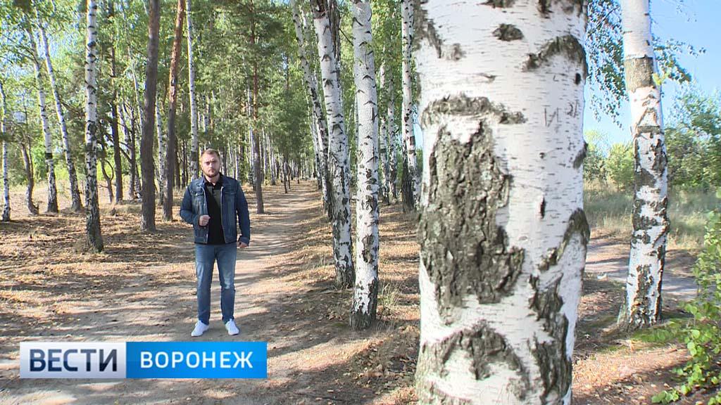 Прогноз погоды с Ильёй Савчуком на 23 – 24.09.17