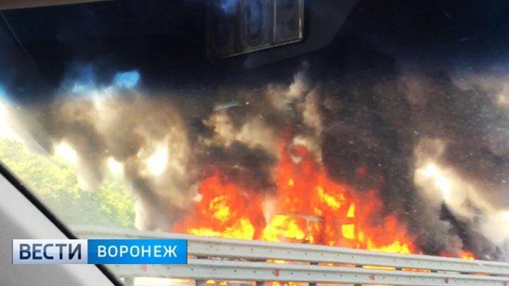 В Воронежской области произошло ДТП с десятками автомобилей – М-4 заблокирована!