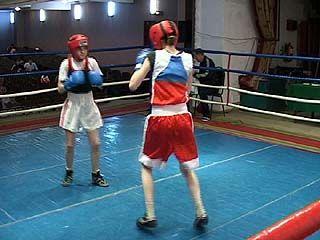 Юные боксеры приехали в Воронеж со всей России