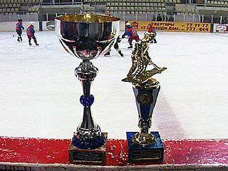 Юные воронежские хоккеисты стали обладателями Кубка на турнире в Саратове