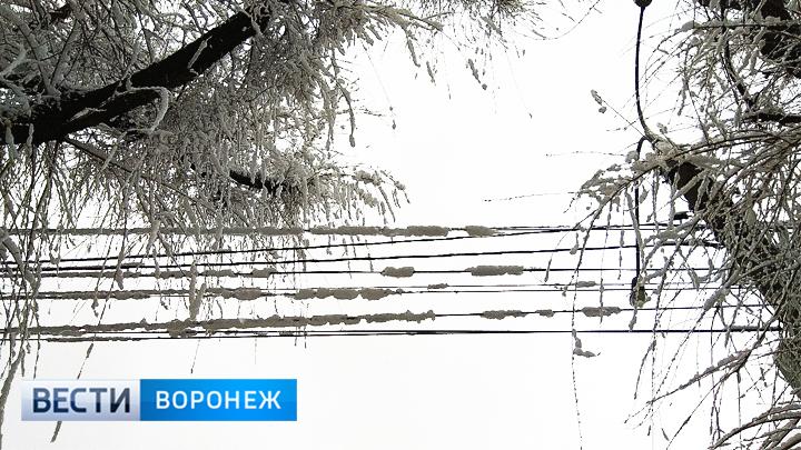 В Воронежской области после снегопада вернули свет в 105 населённых пунктов