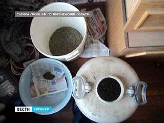 За припасы на зиму марихуаны безработному воронежцу грозит до 10 лет лишения свободы