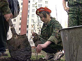"""За время акции """"Зеленый город"""" в Воронеже посажено более 500 деревьев"""