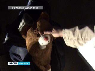 Задержана группа наркодилеров, которая прятала наркотики в плюшевые игрушки
