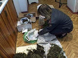 Задержаны 5 наркоторговцев