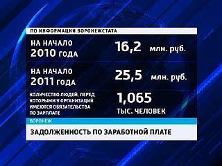 Задолженность по зарплате перед воронежцами за прошлый год составила 25 млн руб.