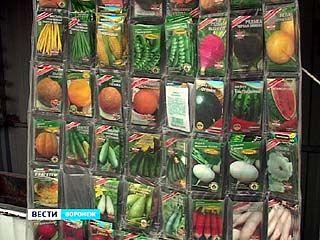 Запрещённые семена чуть ли ни на каждом прилавке воронежских рынков