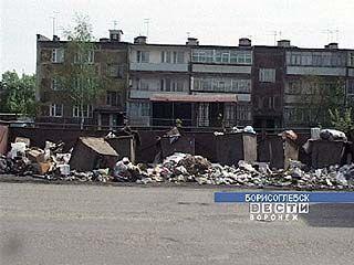 Заваленные отходами помойки - типичная картина для Борисоглебска