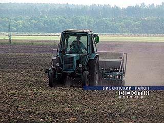 Завершена уборка зерновых в Лискинском районе