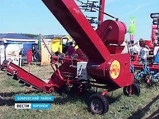 """Завершилась выставка-смотр """"День воронежского поля"""""""