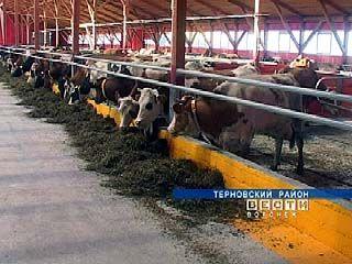 Завершилось строительство молочного комплекса в Терновском районе