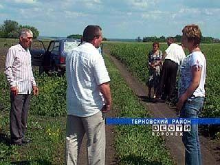 Земельный вопрос вызвал раскол в Терновском районе