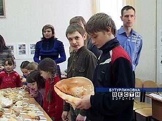 Жители Бутурлиновки всерьез занялись исследованием Каменной степи
