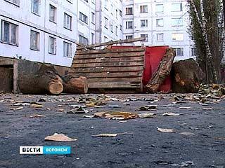 Жители двора по Московскому проспекту перегородили проезд машинам