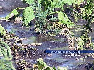 Жители поселка Зеленый Гай остались без заработка и без урожая